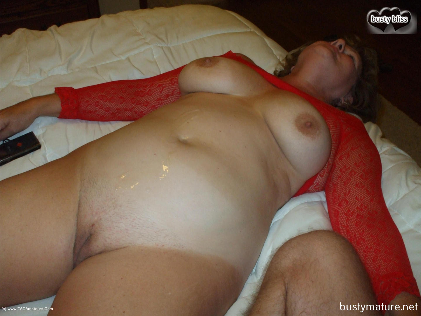 free busty sister porn